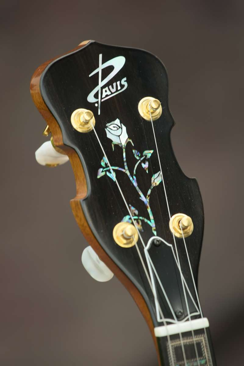 Davis Guitars Custom Banjar 4